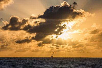 THE OCEAN RACE. THE OCEAN RACE ANUNCIA UNA NUEVA INICIATIVA CONTRA EL CAMBIO CLIMÁTICO